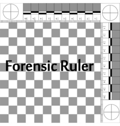 Forensic ruler csi vector