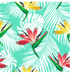 Strelitzia palm pattern bir vector
