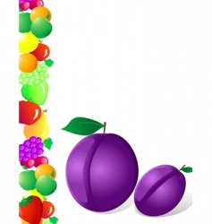 Plum and fruit vector