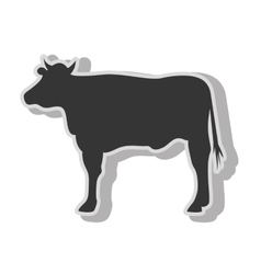 Cow beef farm vector