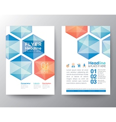 Abstract hexagon Poster Brochure Flyer template vector image vector image