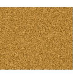 cork board texture vector image
