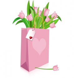 pink tulips in a bag vector image vector image