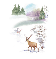 watercolor winter landscape with deers vector image vector image