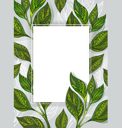 Banner with tea leaves vector