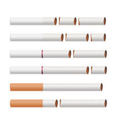 Broken cigarettes smoking kills medical vector