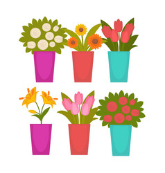 Different colorful flowers in vases vector
