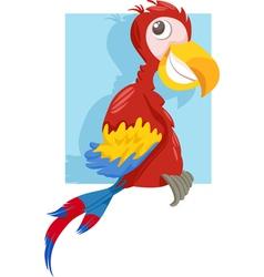 Macaw parrot cartoon vector