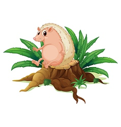 A molehog sitting on the stump with leaves vector image