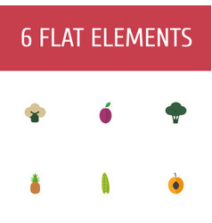 flat icons cabbage apricot broccoli and other vector image