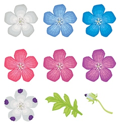 color flower set vector image vector image
