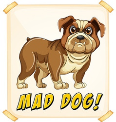 Mad dog vector