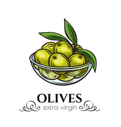 olives in a bowl vector image