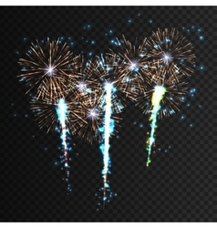 Festive patterned firework explosion in various vector