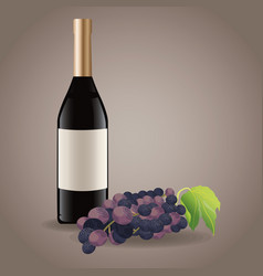 Bottle wine grape drink image vector