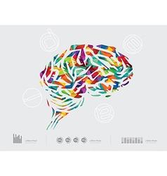 Brainidea vector