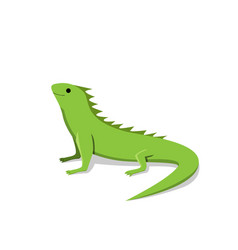 friendly green iguana in flat style vector image