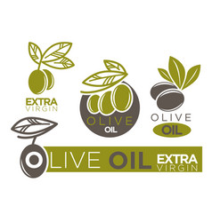 live olive oil extra virgin flat logotypes on vector image vector image