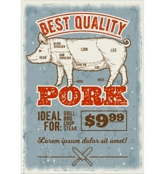 pig in the style engraving vector image