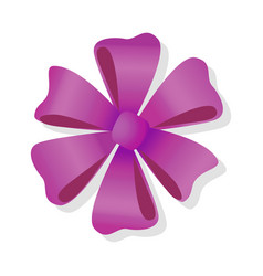 purple flower bow isolated pussy bright bow knot vector image