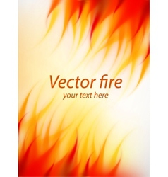 Fire background vector image