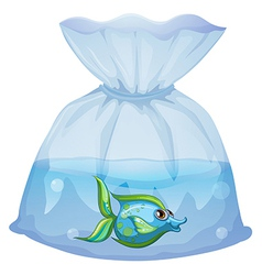 A blue fish inside the plastic pouch vector image vector image
