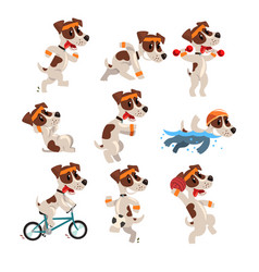 cute sportive jack russell terrier set funny pet vector image