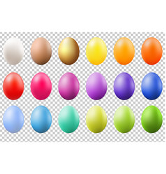 colorful eggs set vector image