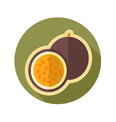 Passionfruit flat icon tropical fruit vector