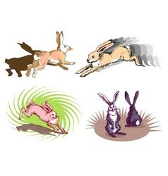 rabbit running vector image