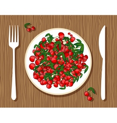 Cherries on plate vector