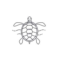 Turtle line icon vector