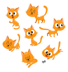 Cute and funny red cat character showing different vector