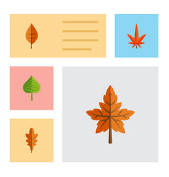 Flat icon maple set of linden alder aspen and vector