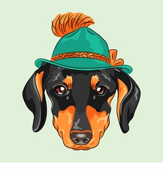 hipster dog dachshund vector image vector image