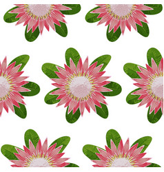 Protea seamless pattern vector