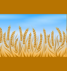 Field of wheat landscape background vector