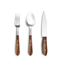 Cutlery with wooden handle realistic set vector