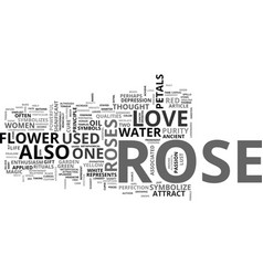 A rose is not just a rose text word cloud concept vector
