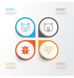 Zoology icons set collection of kitten beetle vector