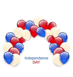 American independence day decoration vector