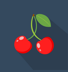 cherry cartoon flat icondark blue background vector image