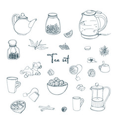 set tea party objects collection with hand drawn vector image vector image