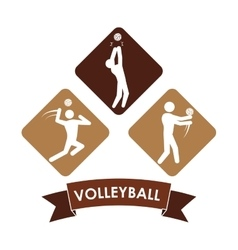 Volleyball icon design vector image