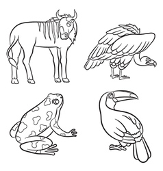 Aninals set vulture toucan frog gnu black and vector
