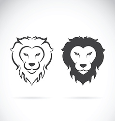 Lion head design vector