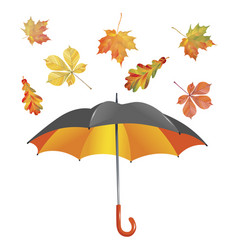 Open umbrella and leaf fall isolated on white vector