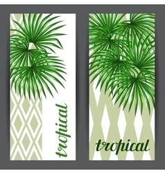 Banners with palms leaves decorative image vector