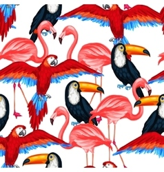 Tropical birds seamless pattern with parrots vector