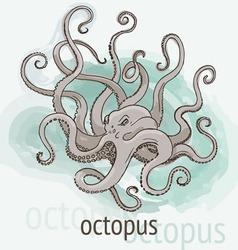 Octopus kraken watercolor vector
